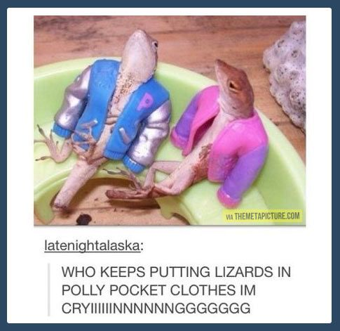 polly pocket lizards